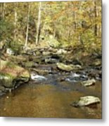 Nature's Finest 5 - Ricketts Glen Metal Print