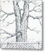 Nature's Lines Metal Print