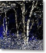 Natures Looking Glass 5 Metal Print