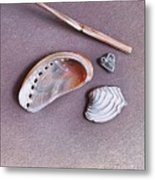 Nature's Memories - Close-up Detail Metal Print