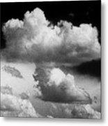 Nature's Mushroom Cloud Metal Print