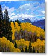 Natures Patterns - Rocky Mountains Metal Print