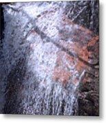 Nature's Shower Head Metal Print