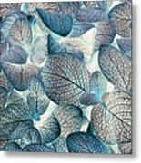 Nature's Tracery Metal Print