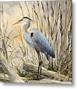 Nature's Wonder Metal Print