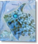 Nautical Beach And Fish #4 Metal Print