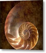 Nautilus Metal Print