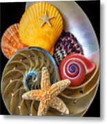 Nautilus With Sea Shells Metal Print