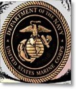 Navy Seal Metal Print