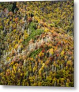 Nc Fall Foliage 0543 Metal Print