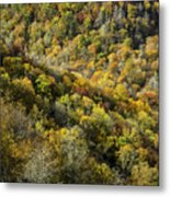 Nc Fall Foliage 0545 Metal Print