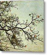 Nearly Bare Branches Metal Print