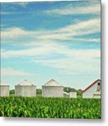 Nebraska Corn Metal Print