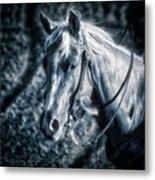 Nebraska Rodeo Roping Horse... Metal Print