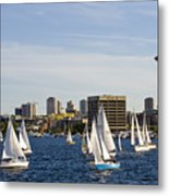 Needle Sails By Metal Print