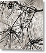 Needles Everywhere Metal Print