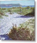 Needles From Hengistbury Head Metal Print