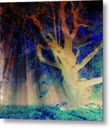 Negative Tree And Sunbeams Metal Print