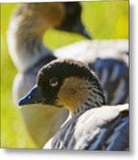 Nene Geese Metal Print