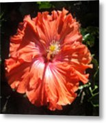 Neon-red Hibiscus 6-17 Metal Print