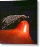 Neuroptera Posing Metal Print