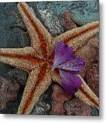 Never Forgotten- Starfish Art Metal Print