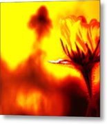New Bloom Metal Print
