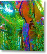 New Creations Metal Print by HollyWood Creation By linda zanini