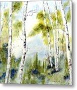 New England Birches Metal Print