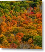 New England Fall Foliage Peak  Metal Print
