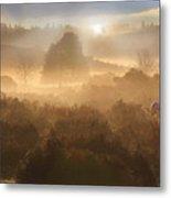 New Forest Dawn Metal Print