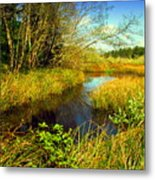 New Growth At The Pond Metal Print