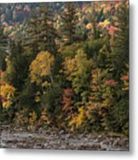 New Hampshire Color Along The Swift River Metal Print