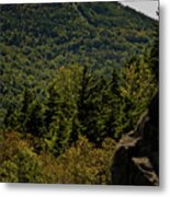 New Hampshire Metal Print