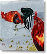 New Harmony Roosters Metal Print