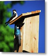 New Home Inspection Metal Print