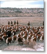 New Mexico Cattle Drive Metal Print
