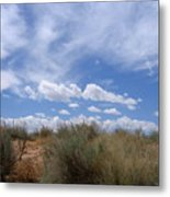 New Mexico Sand Grass Sky Metal Print