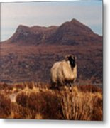 New Monarch Of The Glen Metal Print