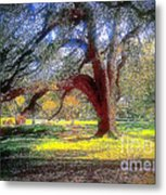 New Orleans Sunday In The Park With George Metal Print