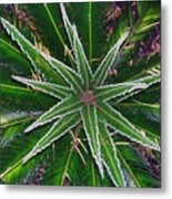 New Palm Leaves Metal Print
