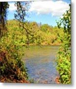 New River Views - Bisset Park - Radford Virginia Metal Print