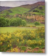 New Zealand Countryside Metal Print