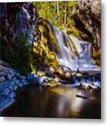 Newberry Country Metal Print