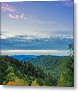 Newfound Gap. Metal Print