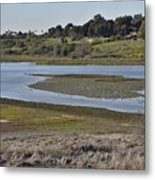 Newport Estuary Looking Across At Visitors Center  Metal Print