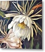 Night Bloomer Metal Print