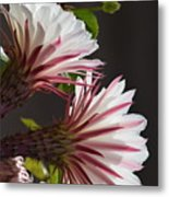 Night Bloomers Metal Print