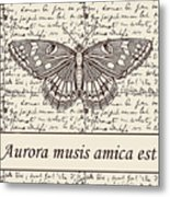 Night Butterfly On Old Letter Metal Print