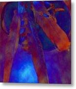 Night Feathers   -019 Metal Print